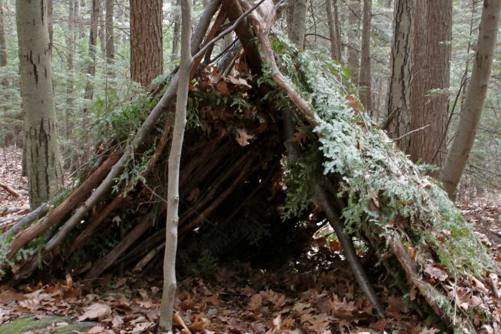 как сделать шалаш в лесу своими руками