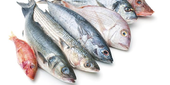 Как делают рыбу холодного копчения: подготовка рыбы, технология копчения