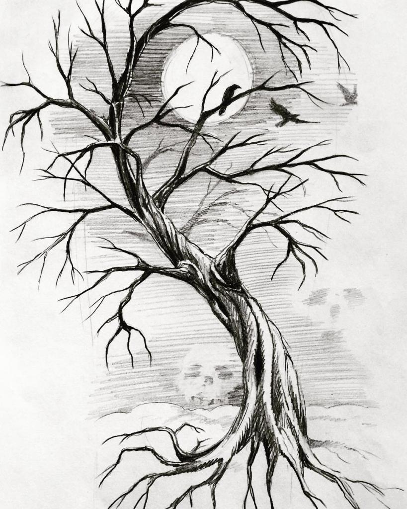 выбирала дерево рисунок графика компания производит