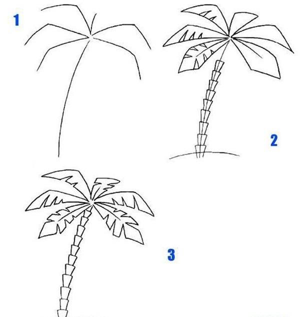 рисунок пальмы карандашом