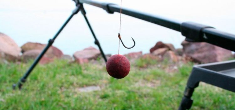 Как насадить бойл на рыболовный крючок