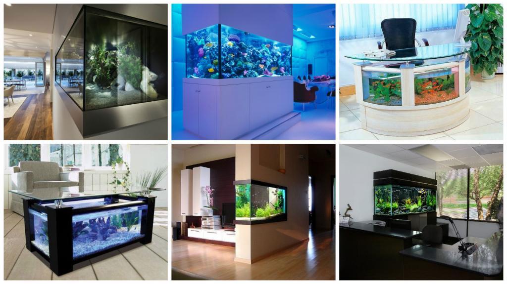 Различные варианты оформления аквариума