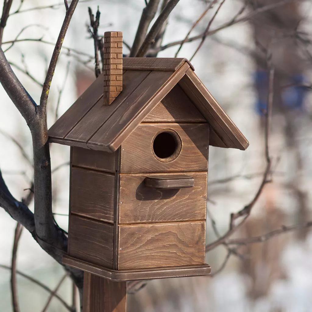 скворечники для птиц своими руками фото из подручных средств волнуйтесь, должно